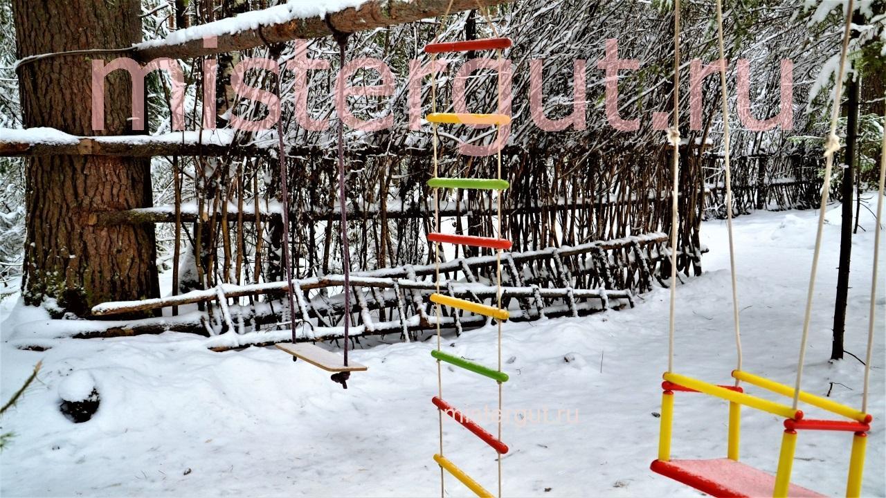 Плетёный забор из живых деревьев